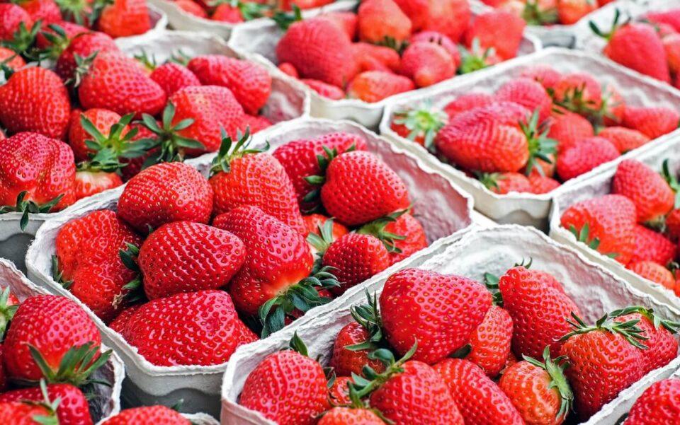 Φράουλες: Ένας ακαταμάχητος απολαυστικός πειρασμός