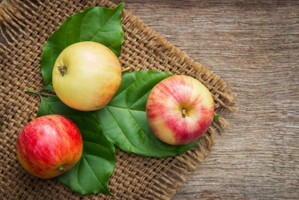 Μήλα, αχλάδια και μούρα για έλεγχο σωματικού βάρους