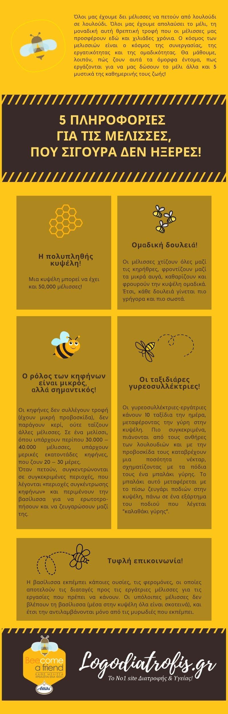 5 πληροφορίες για τις μέλισσες που σίγουρα δεν ήξερες!