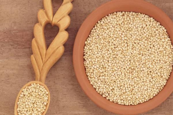 Χηνοπόδιον η κινόα (Chenopodium quinoa)
