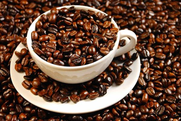 ereuna kafes