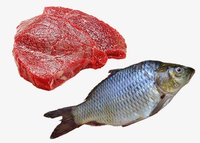 meat fish