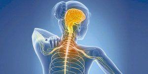 neuropsyxologiki proseggisi sklirinsi kata plakas